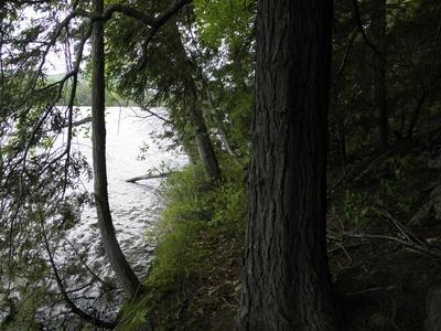 LOT #6 BEAVER WAY, Willsboro, NY 12996 - Photo 2