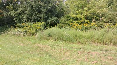 LOT 910 BUENA VISTA PARK, Willsboro, NY 12996 - Photo 2