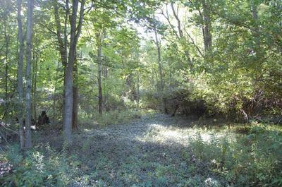 TBD POINT ROAD, Willsboro, NY 12996 - Photo 2