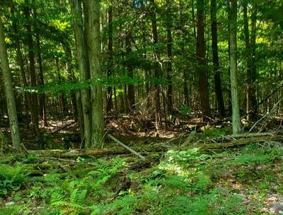 83 GREEN MEADOWS WAY, Keene, NY 12942 - Photo 1