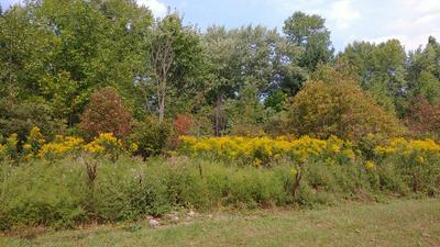 LOT 910 BUENA VISTA PARK, Willsboro, NY 12996 - Photo 1