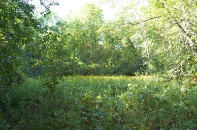 TBD POINT ROAD, Willsboro, NY 12996 - Photo 1