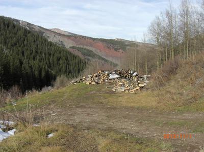 2655 MIDNIGHT MINE RD, Aspen, CO 81611 - Photo 1