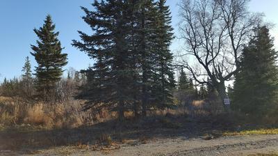 L12 FELLIN LANE, Ninilchik, AK 99639 - Photo 1
