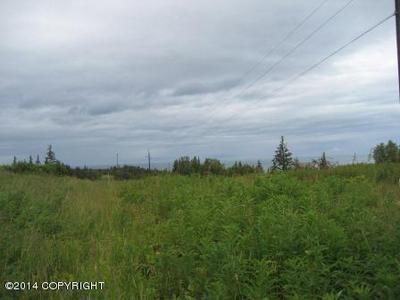 L50 PALMER FAMILY LANE, Ninilchik, AK 99639 - Photo 2