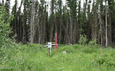 L4B NEW VILLAGE ROAD, Eagle, AK 99738 - Photo 1
