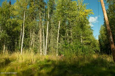 L9 TWIN PEAKS DRIVE, Chugiak, AK 99567 - Photo 2