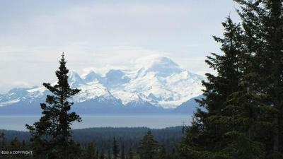TR A STERLING HIGHWAY, Homer, AK 99603 - Photo 2