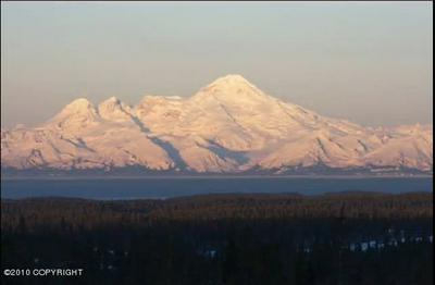 TR A STERLING HIGHWAY, Homer, AK 99603 - Photo 1