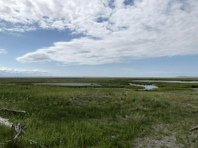 L6 CHEVELEY DRIVE, Anchorage, AK 99515 - Photo 1