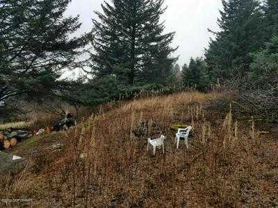 407 HILLSIDE DR, Kodiak, AK 99615 - Photo 2