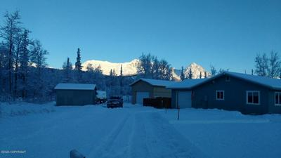 18983 E JESSICA ANN ST, Sutton, AK 99674 - Photo 2