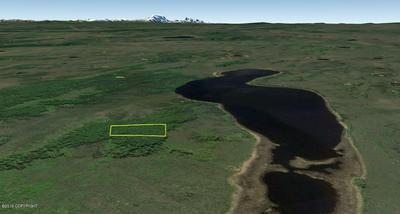 L3 B3 GESKAKMINA LAKE (NO ROAD), Nenana, AK 99760 - Photo 1