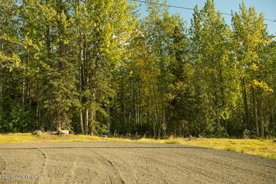 L5 TWIN PEAKS DRIVE, Chugiak, AK 99567 - Photo 2
