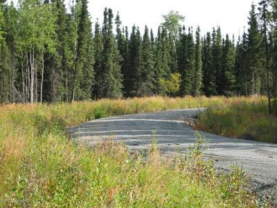 L8 B1 FAIRWEATHER ROAD, Soldotna, AK 99669 - Photo 2