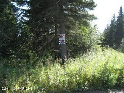 24795 STERLING HIGHWAY, Ninilchik, AK 99639 - Photo 2
