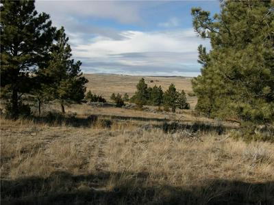 TBD WOODLAND ROAD, Roundup, MT 59072 - Photo 1