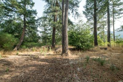 2 MAPLE RD, Woodacre, CA 94973 - Photo 2