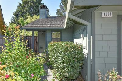 1901 COLOMBARD WAY, Yountville, CA 94599 - Photo 2