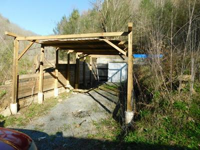 0 GRAPEVINE BRANCH ROAD, IAEGER, WV 24844 - Photo 2