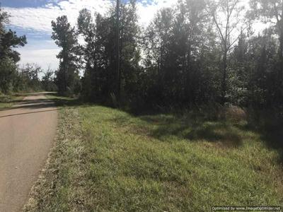 1069 WILLIAMS RD, Wesson, MS 39191 - Photo 1