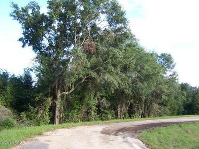 26 APPALACHEE TRAIL, Marianna, FL 32446 - Photo 2
