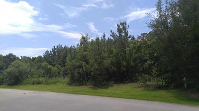2693 HIGHWAY 73, Marianna, FL 32448 - Photo 2