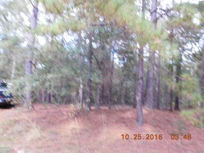 00 PITTS ROAD, Fountain, FL 32438 - Photo 2