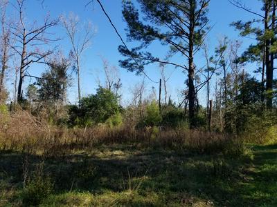 735 ADOLPHUS MCMILLIAN RD, Chattahoochee, FL 32324 - Photo 2