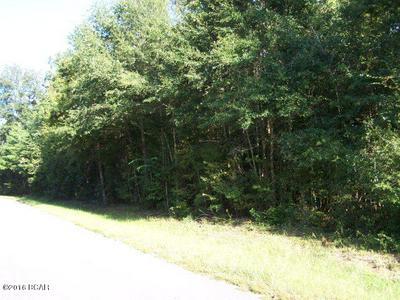 22 OAK DRIVE, Marianna, FL 32446 - Photo 1