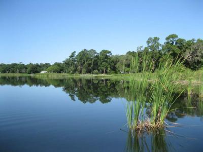 117 LAKE SHORE DR, Interlachen, FL 32148 - Photo 1