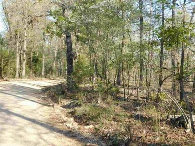 43.28 ACRES ON PINE VALLEY, Hardy, AR 72542 - Photo 1