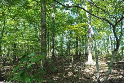 FALLEN TREE ROAD, Marshall, AR 72650 - Photo 1