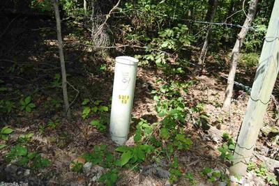 FALLEN TREE ROAD, Marshall, AR 72650 - Photo 2