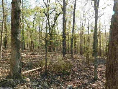 37.9 ACRES PINE VALLEY TRAIL, Hardy, AR 72542 - Photo 1