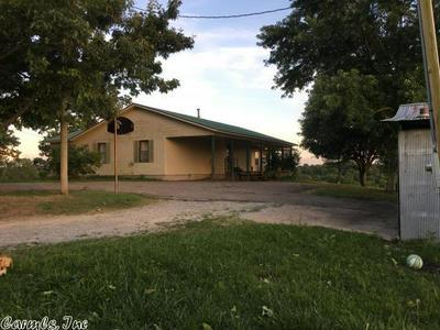 601 BREWER RD, Sidney, AR 72577 - Photo 2