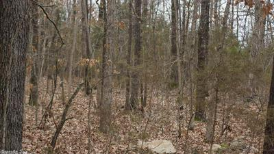 BENS CREEK ROAD, Franklin, AR 72536 - Photo 2