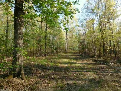 37.9 ACRES PINE VALLEY TRAIL, Hardy, AR 72542 - Photo 2