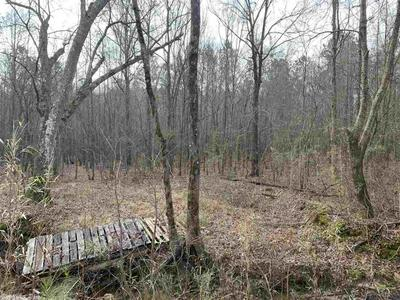 00 WHITE BLUFF ROAD, Redfield, AR 72132 - Photo 2