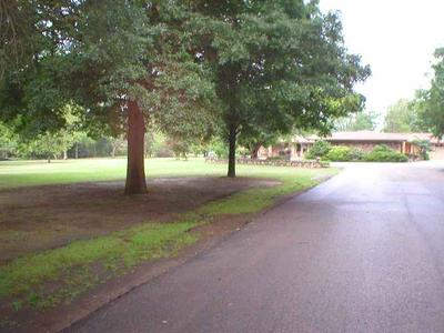 1115 N CHARLYNE AVE, Brinkley, AR 72021 - Photo 2
