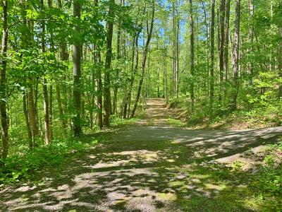 00 BROOK LANE AND YOUNG COVE ROAD, Franklin, NC 28734 - Photo 2