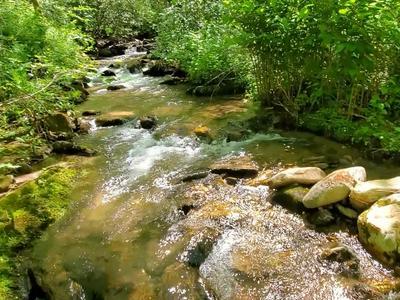 00 BUCK CREEK ROAD, Highlands, NC 28741 - Photo 2