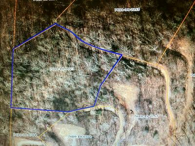 LOT 12A WILD TURKEY DRIVE, Dillsboro, NC 28725 - Photo 1