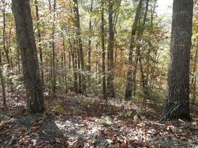LOT #2 FULLWOOD LANE, Dillsboro, NC 28725 - Photo 1
