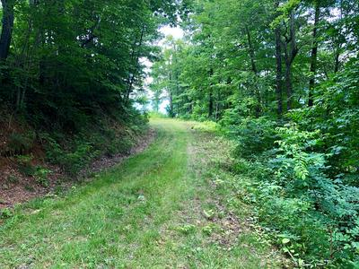 LOT 12 WILD TURKEY DRIVE, Dillsboro, NC 28725 - Photo 2