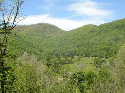 0 RUSTLING WOODS TRAIL, Cullowhee, NC 28723 - Photo 1