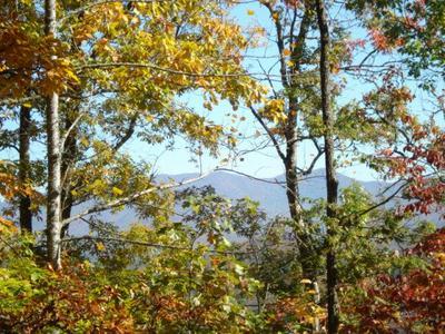 00 MYSTIC MOUNTAIN ROAD, Franklin, NC 28734 - Photo 1