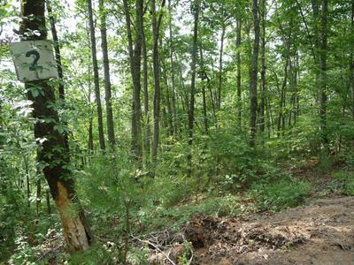 LOT #2 FULLWOOD LANE, Dillsboro, NC 28725 - Photo 2