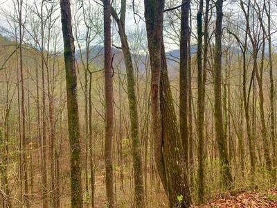 00 WHIPPORWILL LANE, Franklin, NC 28734 - Photo 1