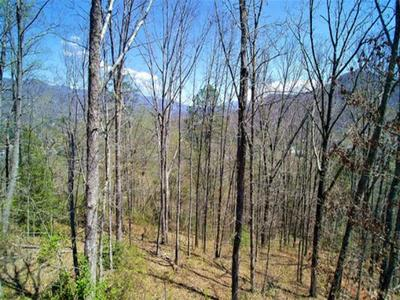 LOT #12 FULLWOOD LANE, Dillsboro, NC 28725 - Photo 2